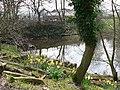 Pond at Stoney Royd - geograph.org.uk - 885869.jpg