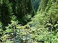 Ponor patak a kitörése után - panoramio.jpg