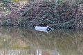 Poubelle d'extérieur jetée dans la Vilaine à Rennes.jpg