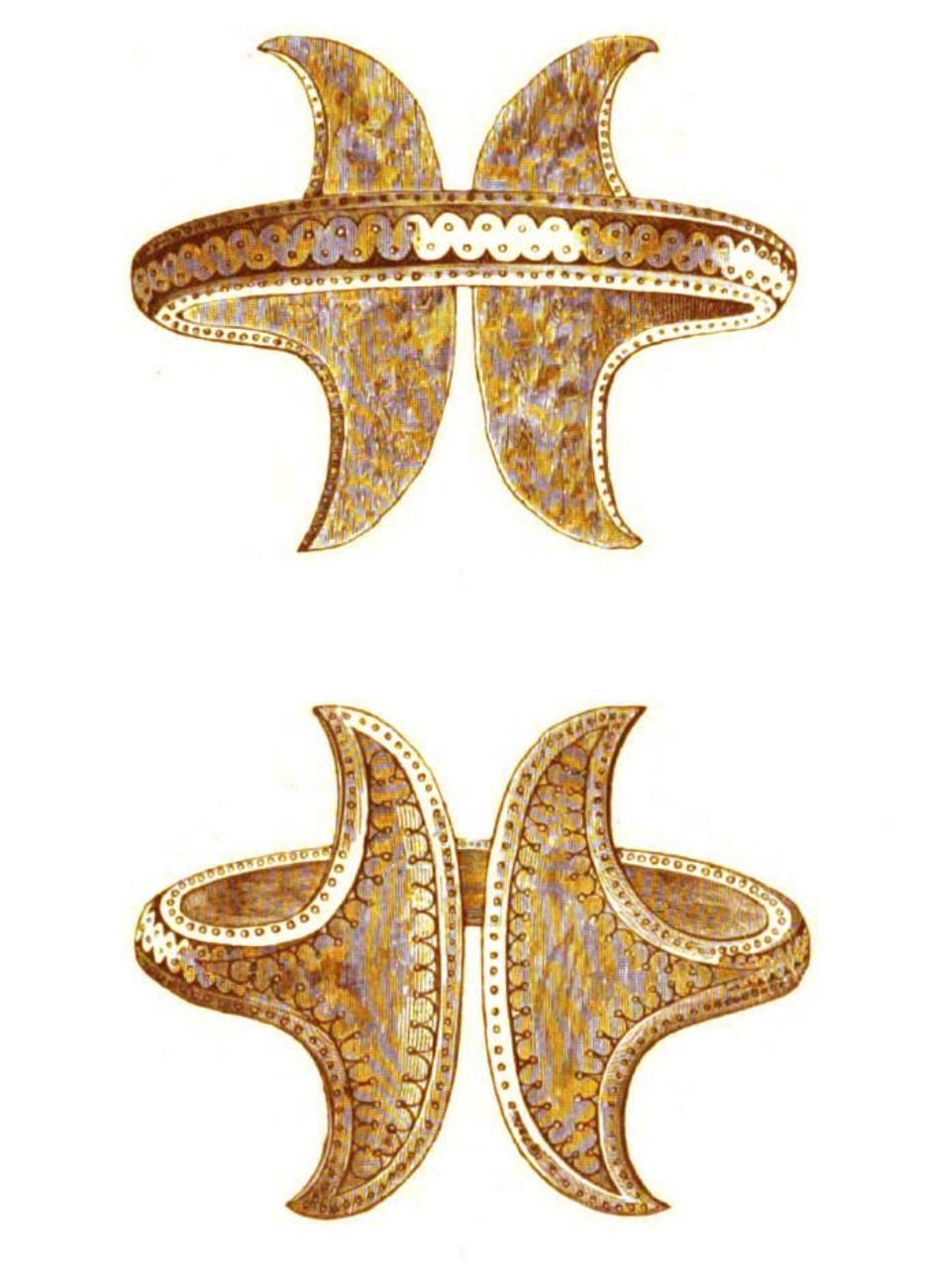 Prehistoric Transylvania Dacia bracelet
