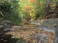 Premier jour d'octobre le ruisseau se colore. October begins and already the creek goes colourful - panoramio.jpg