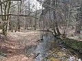 Prießnitz Dresdner Heide 2021-03-28 8.jpg
