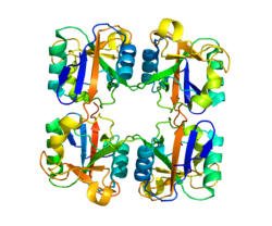 Protein CD207 PDB 3C22.png