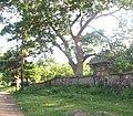 Puerta de la antigua hacienda San Juan Buena Vista. - panoramio.jpg