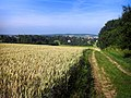 Pulsnitz, Blick vom Siegesberg - panoramio.jpg