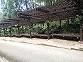 Putrajaya, the Botanical Garden 31.jpg