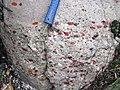 Quartzite & jasper-quartz pebble conglomerate (Lorrain Formation, Paleoproterozoic, ~2.3 Ga; Ottertail Lake Northeast roadcut, near Bruce Mines, Ontario, Canada) 4 (47656698412).jpg
