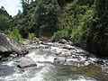 Quebrada La Herrera.jpg