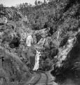 Queensland State Archives 1229 Stony Creek Falls Cairns Railway c 1935.png