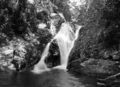 Queensland State Archives 1316 Jacobs Ladder Falls Mt Hypipamee c 1935.png