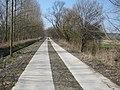 Radweg Wiesenhagen - Woltersdorf - panoramio.jpg