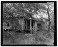 Rear view from north to south - 503 South Jackson Street (House), 503 South Jackson Street, Albany, Dougherty County, GA HABS GA-1175-F-3.tif