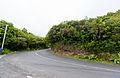 Região autónoma da Madeira em Julho de Dois Mil e Quatorze IMG 4052 (14874669824).jpg