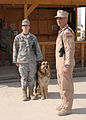 Retiring at Bagram, after 63 dog years -a.JPG