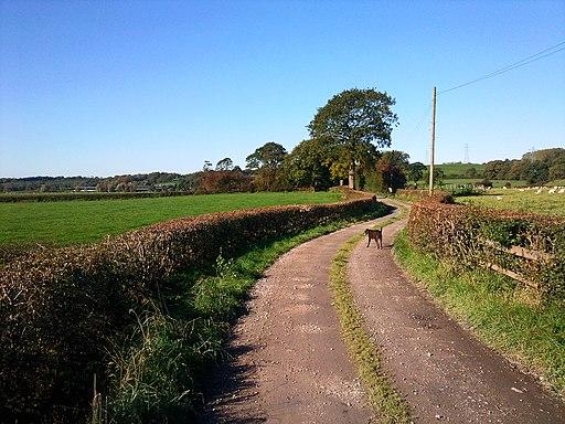 Ribchester, UK - panoramio (1)