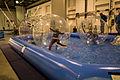 Riesen Wasserbälle - Messe Dresden.jpg