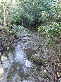 Rio Pastillo near PR-501 at Km 4.6 in Barrio Marueño (DSC02292A).jpg