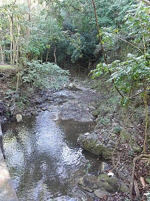 Pastillo River - Pastillo River near PR-501, km 4.6, in Barrio Marueño, Ponce, Puerto Rico