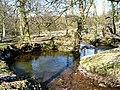 River Esk - geograph.org.uk - 132663.jpg