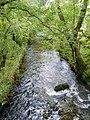 River Kent - geograph.org.uk - 960551.jpg