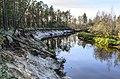 River Pochekuyka. р. Почекуйка. - panoramio - Александр Попрыгин (2).jpg