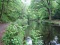 River Teign upstream of Fingle Mill Head Weir - geograph.org.uk - 438279.jpg