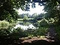 River Yare, Cringleford - geograph.org.uk - 27721.jpg
