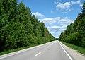 Road A11 near Sīklesciems.jpg