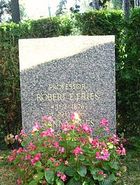 Robert E. Fries (1876-1966) professor.JPG