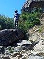 Rock Rabbit at Ha Poso, Leribe - panoramio.jpg