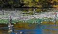 Rock piles and inuksuk in Wallkill River, Walden, NY.jpg