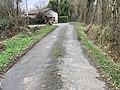 Route Petits Poissons St Jean Veyle 5.jpg