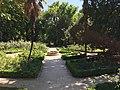 Royal Botanical Garden in Madrid 08.jpg