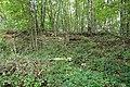 Ruine de mines et forges Haies-Monet Landenne Andenne.jpg