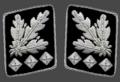 SS-Oberst-Gruppenfuhrer collar.png