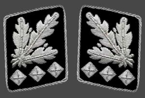 SS-Oberst-Gruppenführer - Gorget patches