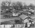 Sacramento, California. Fifty to sixty families pay $1 per month ground rent. No sanitary facilities . . . - NARA - 521791.tif