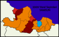 Samsun2009Yerel.png