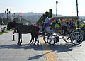 Samsun Sahil Yolu'nda faytonla gezinti yapan bir aile (2).JPG