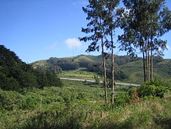 San Bruno Mountain California.jpg