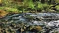 Scey-en-Varais, source du Maine.jpg