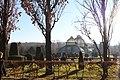 Schloßpark Schönbrunn, Palmenhaus, Bild 18.jpg