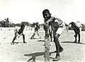 School boys playing cricket in Kingston, Jamaica in 1965.jpg