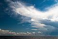 Seabord of Gulf of Finland Summer sky Primorskoye shosse, 414, Repino, gorod Sankt-Peterburg, Russia.jpg
