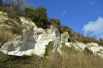 Chalk - Open chalk pit, Seale, Surrey, UK