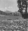 Sebenje z Begunjščico 1938.jpg