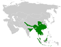 Seicercus distribution map.png