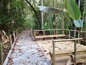 Carara National Park - Image: Sendero universal Carara Costa Rica 3