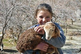 Wakhi people - A Wakhi girl from the village of Zood Khun, Chapursan Valley, Pakistan.