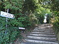 Shanklin Steephill Path.JPG
